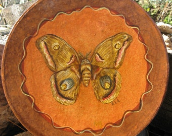 Moth Art Box Hand Painted Moth Box Home Decor Vintage Box  Moth Painting Moth Speicimen Insect Painting