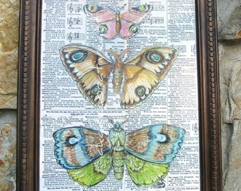 "Moth Vintage Moth Print Altered Art Moth Collage Home Decor Natural History Print Framed Vintage Insect Print 11 3/4"" x 15"""