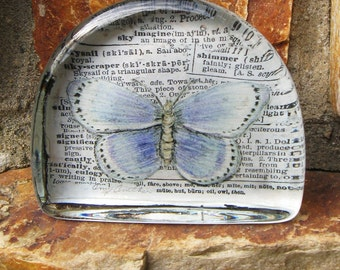 Butterfly,Blue Butterfly, Altered Art Mixed Media, Natural History Specimen, Original Art Glass Paperweight