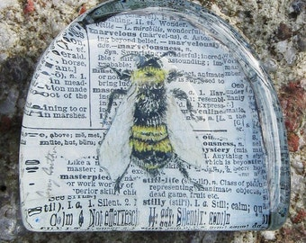 Bee Print, Bee Drawing, Vintage Bee Print, Bee, Natural History Print, Glass Paperweight, Home Decor, Office