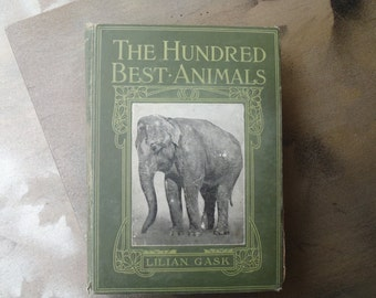 The Hundred Best Animals by Lillian Gask 1914 Free Shipping
