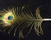 Peacock Feather Pen Beautifully Iridescent
