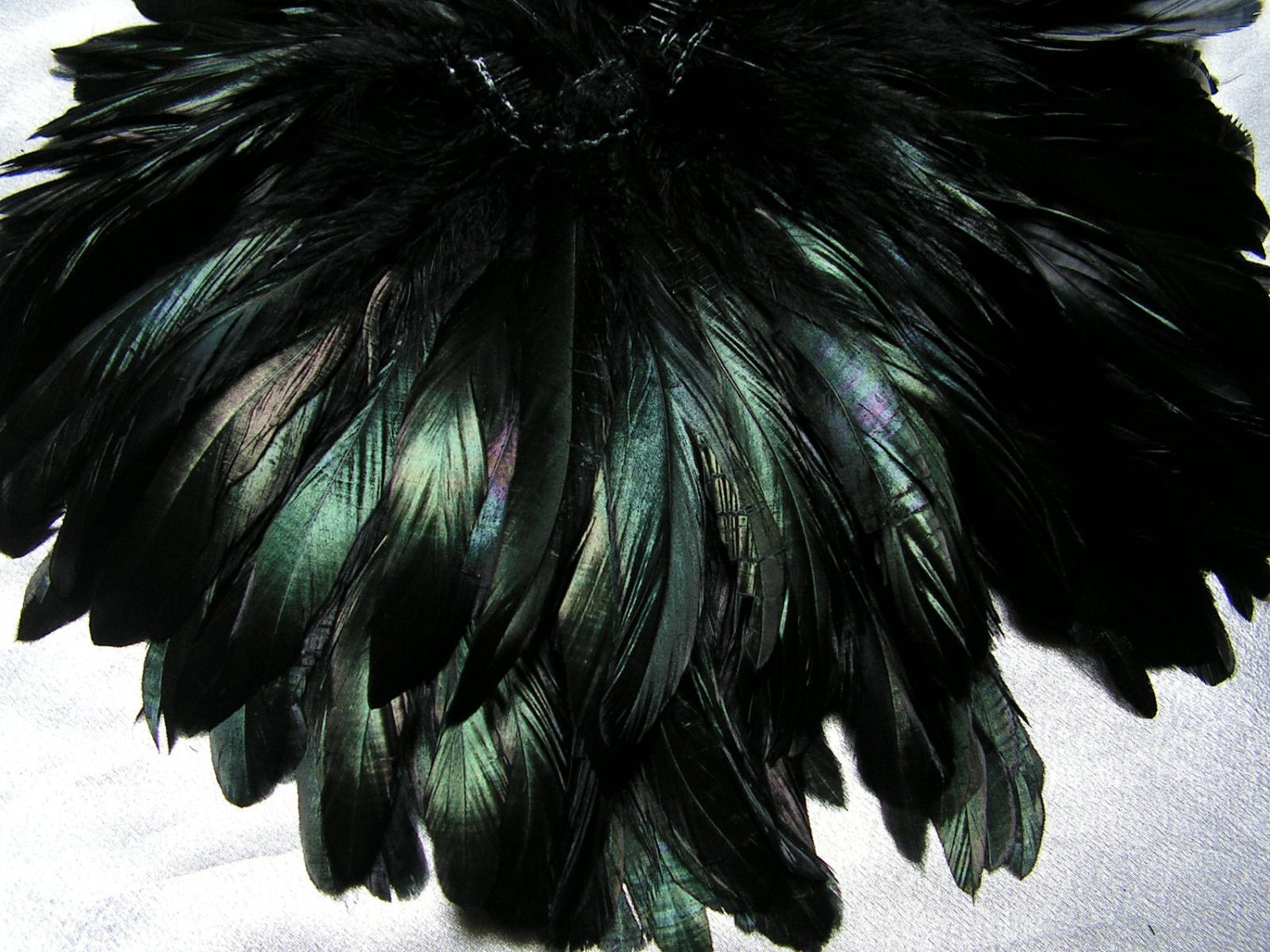 Beautiful black rooster feathers bulk lot wholesale