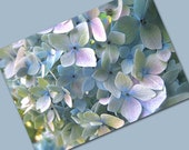 Soft Blue Hydrangea - Card with Envelope