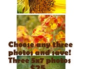 SAVE on any THREE photos of your choice, size 5x7
