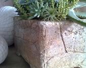 Planter Hypertufa Kit