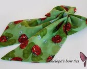 Green bow tie with cute ladybug pattern