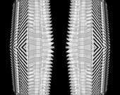 building - architecture op art black and white