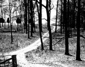 "11x14 Mounted Fine Art Photograph- ""Snowy Path"""