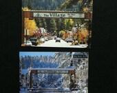 Vintage Big Bear Postcards
