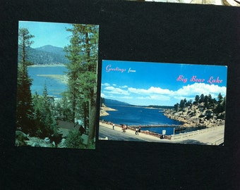 Vintage Big Bear Postcard