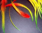 10ct Grizzly Whiting Rainbow Tye Dye Hair Feather Extension Lot Bright Rasta Jamaica
