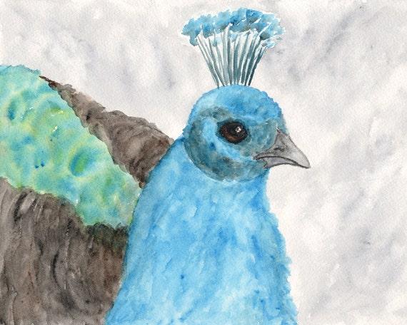 Peacock bird painting, watercolor peacock art, peacock feathers, peacock blue, original painting - 10X8