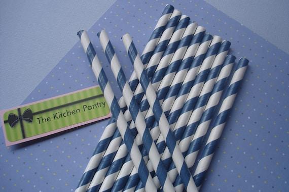 Paper Straws   - Navy Stripes (25)