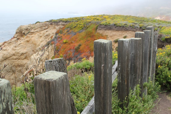 Rustic Old Fence at Garrapata State Park, Big Sur, California