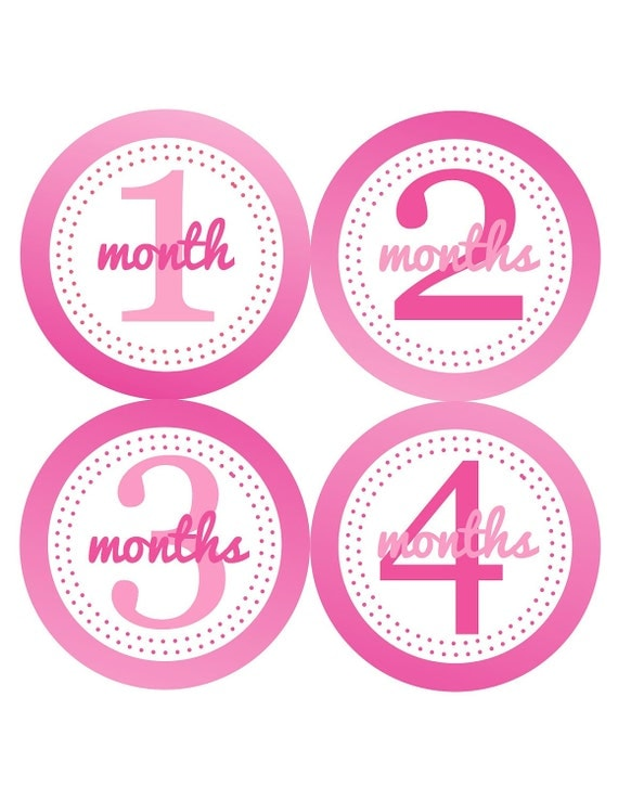 Baby Girl Monthly Baby Stickers Pink Ombre Baby Shower Gift Photo Prop Baby Month Stickers Month to Month Stickers Milestone Sticker