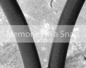 Letter V - Alphabet Photography Individual 4x6 Black and White Photo for Name Frames