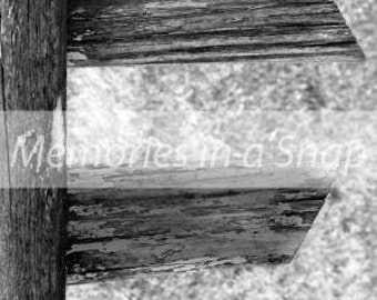 Letter F - Alphabet Photography Individual 4x6 Black and White Photo for Name Frames
