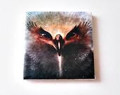 Eagle/Indian Magnet