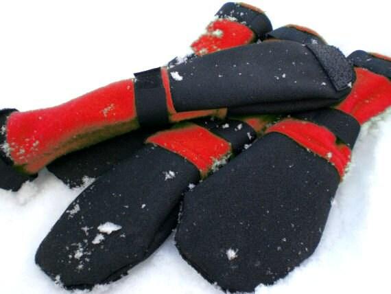 Toesties Winter Dog Boots: Cardinal