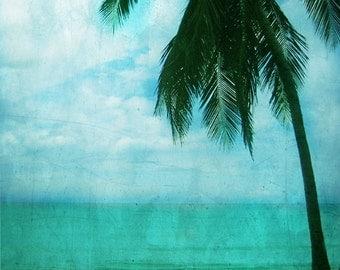 Palm Tree Beach Art Print - Silhouette Aqua Ocean Sky Vintage Beach House Wall Art Home Decor Photograph
