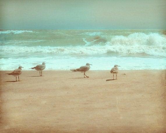 Seagull beach art print aqua green gray tan bird beach house for Beach house prints