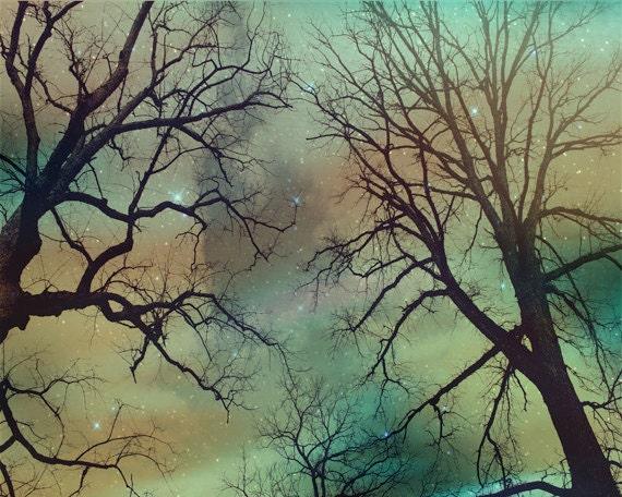 Tree Silhouette Sky Stars Art Print - Peach Aqua Nursery Night Whimsical Haunting Winter Home Decor Wal Art Photograph