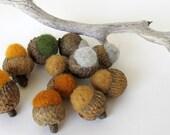 Needle Felted Wool Acorns Set of 12 Fall Colors