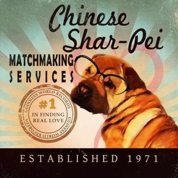 Matchmaking services in china