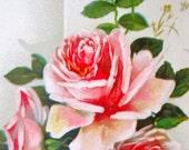 Anitque German Postcard Pink Roses 1900s Paper Ephemera