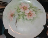 Vintage Hand Painted Porcelain Plate Lovely Shades of Pink to Coral  Spray of Florals China Painting