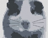 Cross Stitch kit - Guineapig