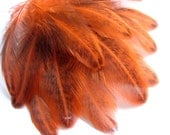 Speckled Crawfish Orange HEN feathers for jewelry, millenary, crafts, fly fishing and more - 12 pcs/ F77