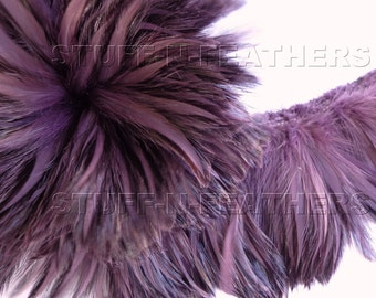 Wholesale / bulk feathers - Amethyst rooster furnace hackle feathers, real feathers strung for millinery, jewelry making, costumes / FB88-4