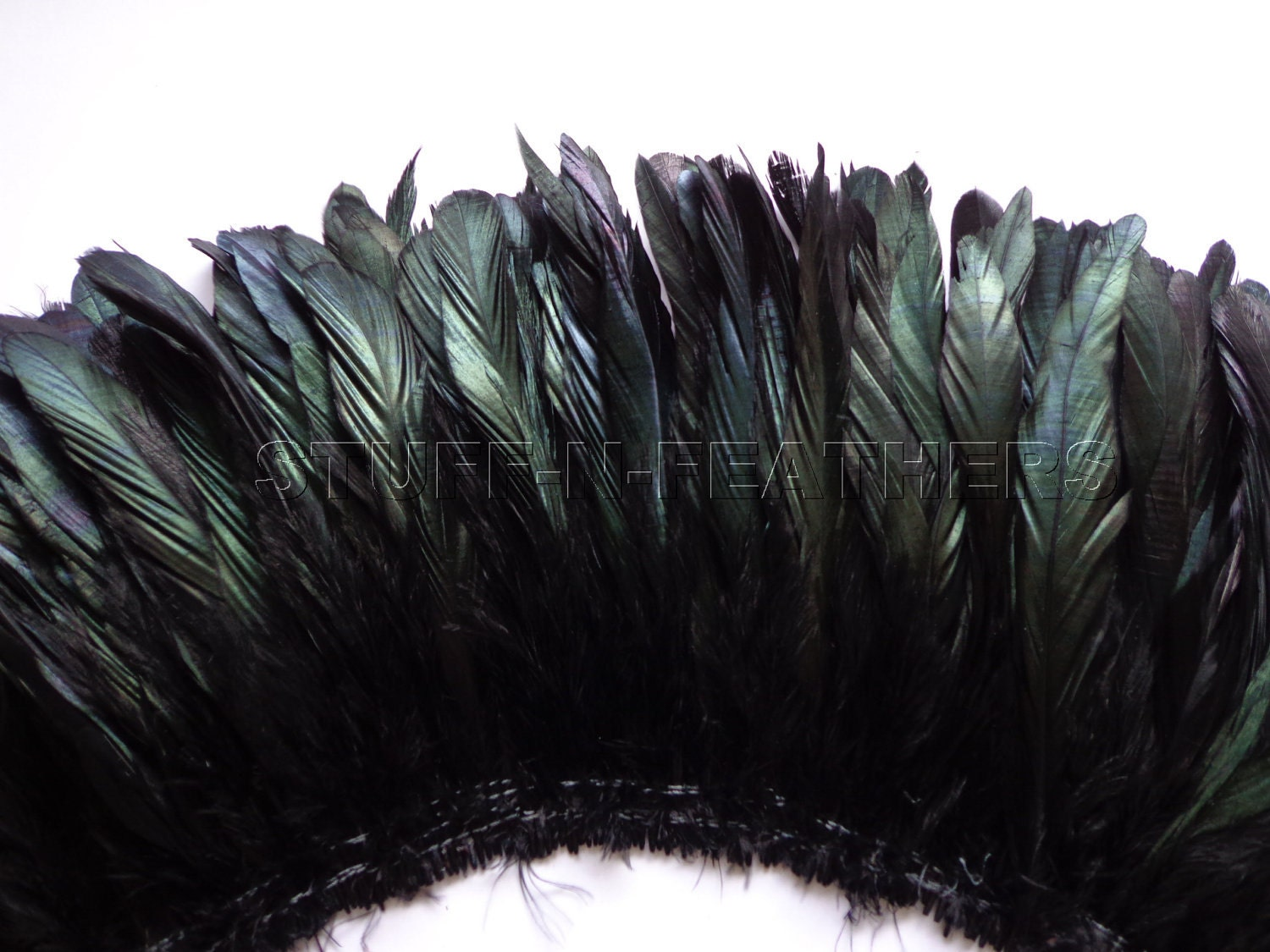 Black ostrich feathers - photo#20
