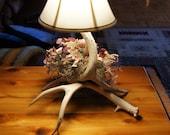mule deer antler table lamp