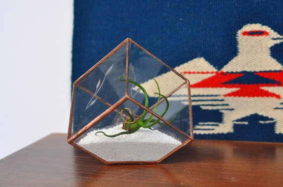 SALE OOAK Earth Terrarium Kit with Etched Leaves -- mini cube glass planter in copper or silver color -- terrarium supplies -- eco friendly