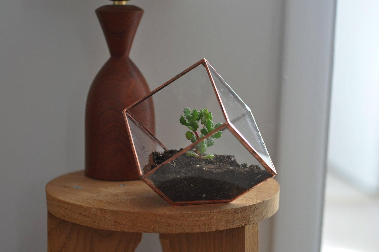 earth terrarium kit small cube glass planter in copper or. Black Bedroom Furniture Sets. Home Design Ideas