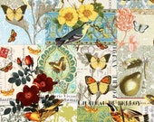 Michael Miller Fabric - French Journal Collection - Anjou Pour Vous - Yellow