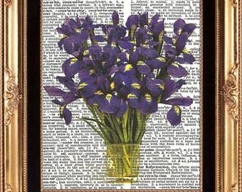 Iris Flower Vintage Dictionary Page Art Print to Frame Beautiful Violet Yellow Iris in Glass Vase Garden Nature Flowers Home Wall Picture