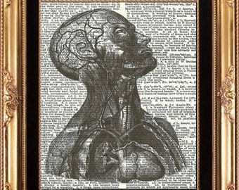 HUMAN ANATOMY - Vintage Dictionary Print Antique Medical Digital Image Printed on Old Page Beautiful Details Picture to Frame Wall Hanging