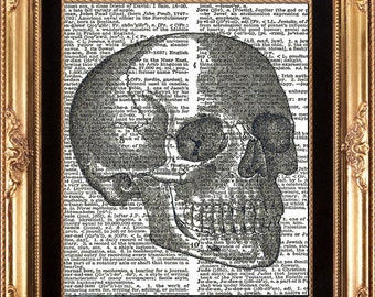 SCULL - Vintage Dictionary Page Print Antique Human Anatomy Medical Digital Image Beautiful Details Picture to Frame Wall Hanging
