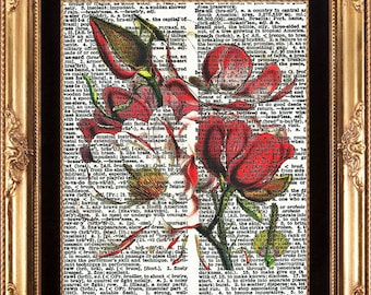 Antique Magnolia Art Print Botanical Flower Vintage Dictionary Page to Frame Beautiful White Red Flower Tree Garden Green Nature Wall Decor