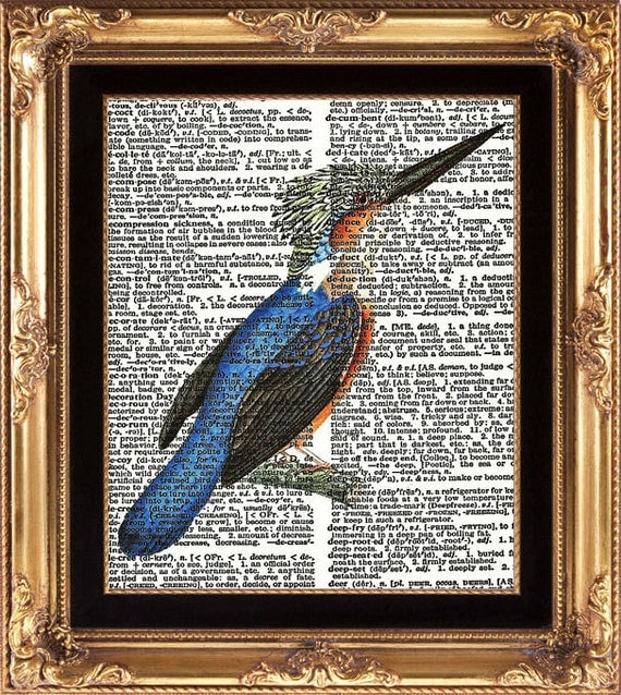 BIRD PRINT blue Antique Woodpecker - Vintage Bird Print printed on Vintage Dictionary Page Plate Birds Nature Print to Frame Wall Decoration