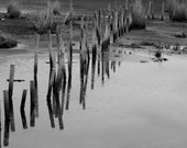 Water Reflections Photo - B&W Water Photo theartisangroup