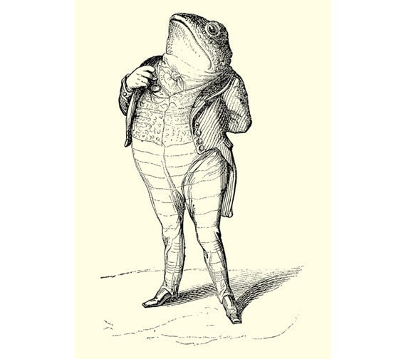 Patriotic Toad Grandville Animal Art Print - 5 x 7