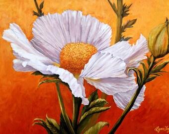 Poppy prints,  Matilija Poppy canvas prints, poppies in prints, poppy artwork, California poppy, Matilija poppy