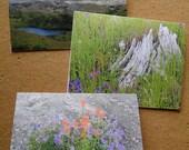Mount St. Helens Photographs 3 Blank Card Set