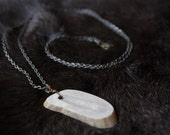 Forest Energy Deer Antler Necklace