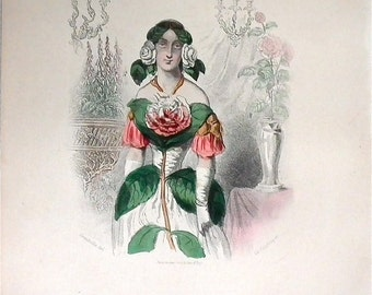 Camellia hand colored plate from Les Fleurs Animees by JJ Grandville